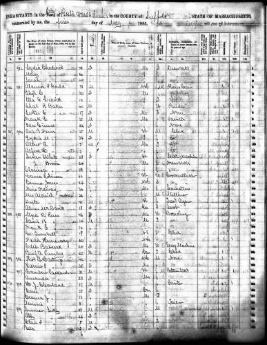 Boston, Suffolk County, Massachusetts, Death Register 1875, p. 260, no. 7096, Lydia A. Chadwick, 14 Oct 1875