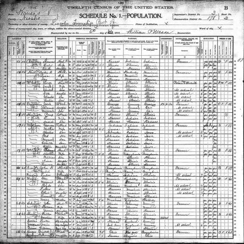 1900 U.S. census, Lincoln, Neosho County, Kansas, population schedule, enumeration district (ED) 178, sheet 3B, dwelling 62, Elizabeth Hooper household.
