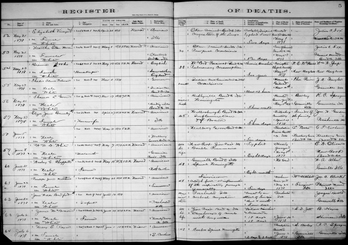 Bond County, Illinois, Register of Deaths, vol. A, p. 5, no. 60, Wesley G. Chappell, 15 May 1878.