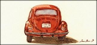 896-beetle-a-juan-bosco