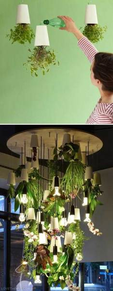 indoor hanging garden ideas 18 Indoor Herb Garden Ideas