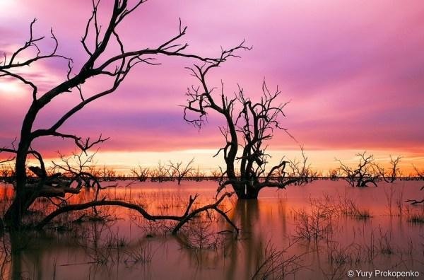 Sunset at Menindee Lakes