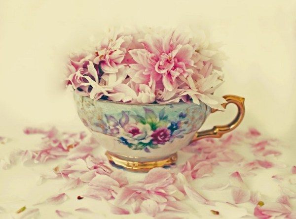 A Cup Of Vintage