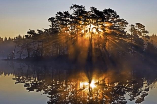 Heal Me by Sunrise V