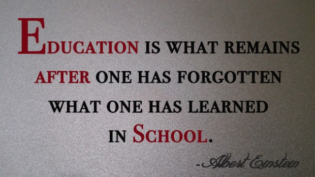 Education is what remains after