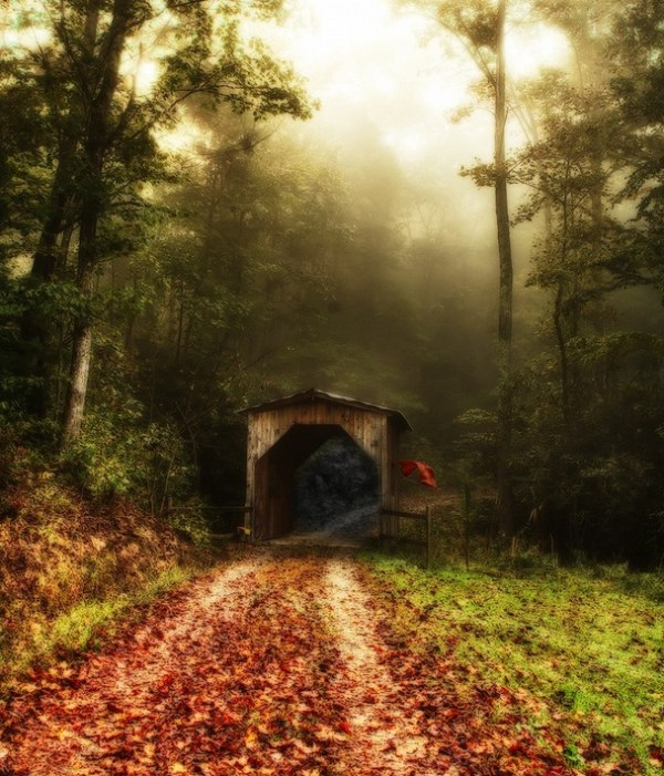 Foggy Lane and the red shawl