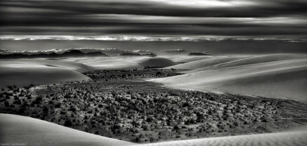 Upcoming sandstorm