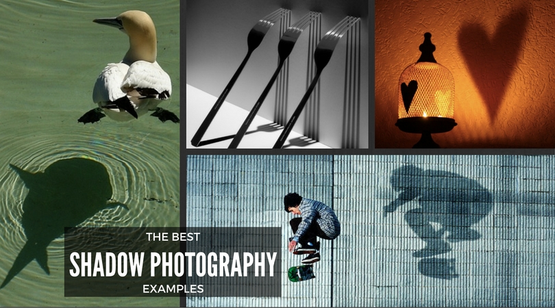 best-shadow-photography-examples