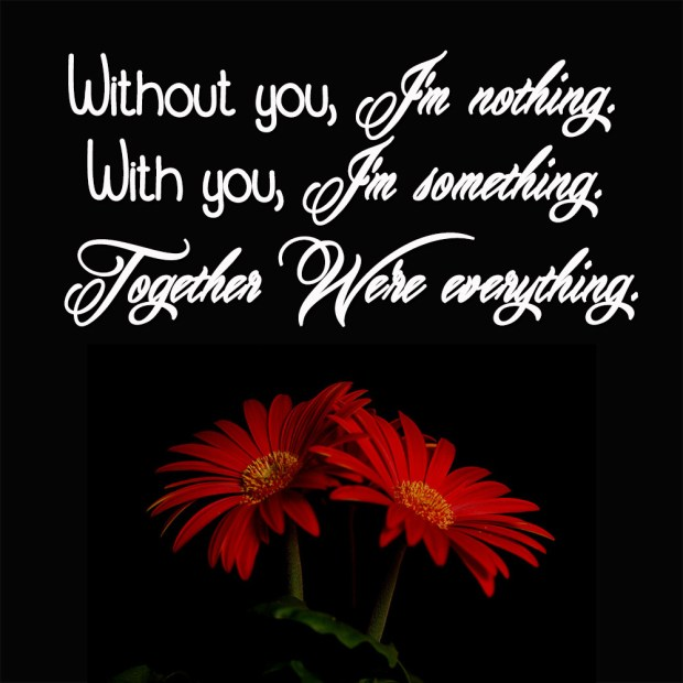 Without you, I'm nothing. With you, I'm something. Together We're everything.