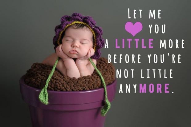 Let me love you little more