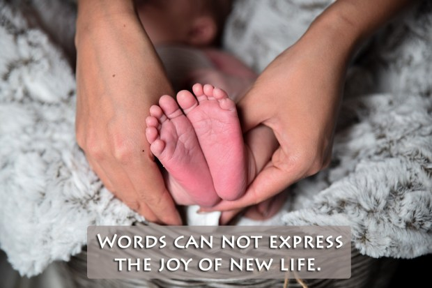 Words can not express the joy of new life