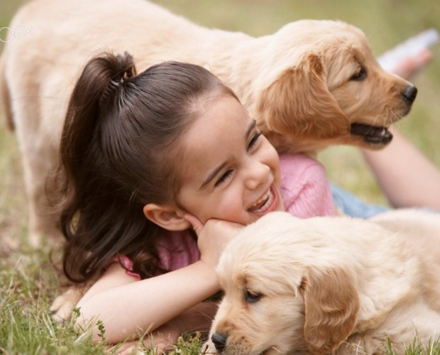girl-playing-with-puppies-outdoors