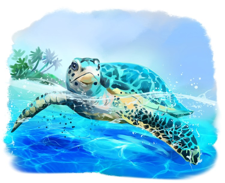 Sea turtle floats watercolor drawing