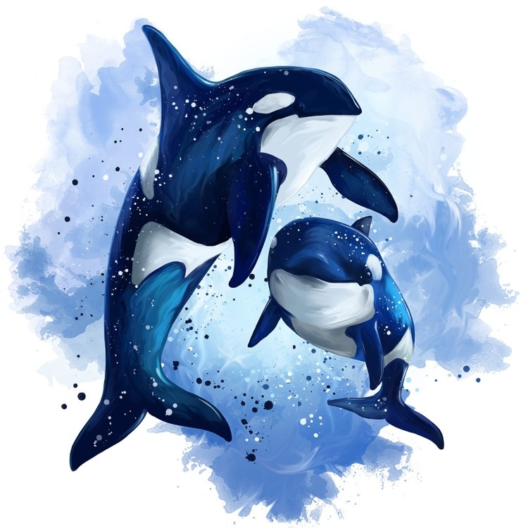 Two killer whales in the ocean