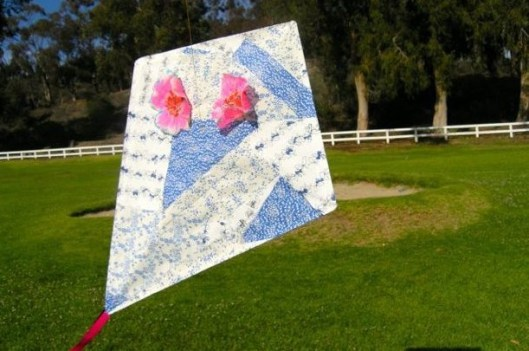 Kite pictures 8