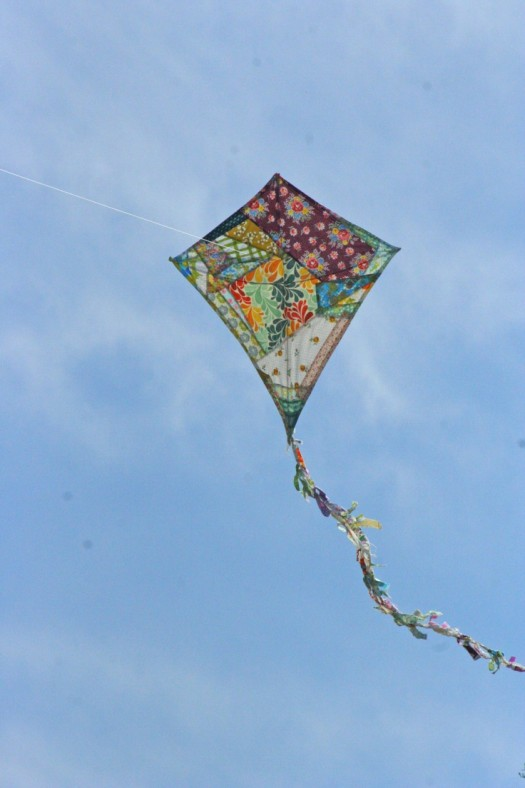 kite pictures 1
