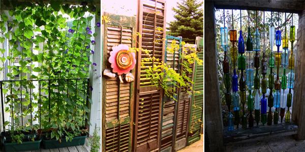 Home And Garden Backyard Ideas