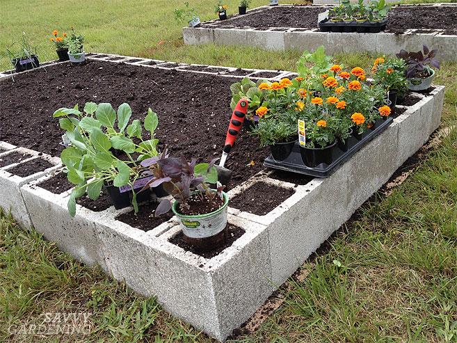 Raised Garden Cinder Blocks