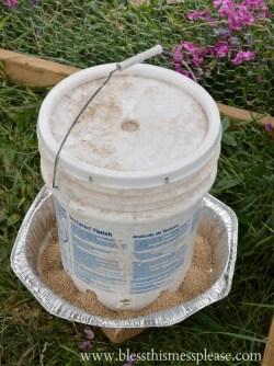 Chicken Feeder from 5-Galon Buckets