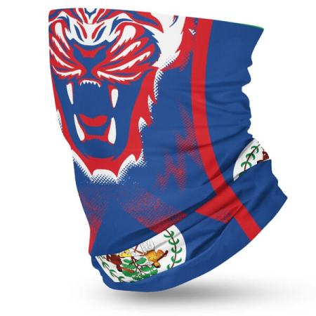 Belize-Flag--2