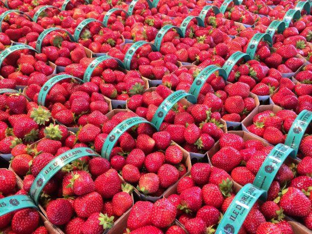 Jean Talon Market Montreal strawberries