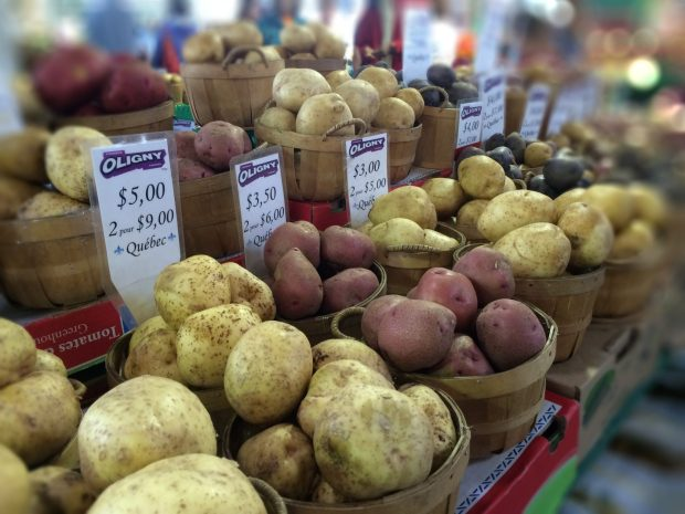 Jean Talon Market Montreal potatoes