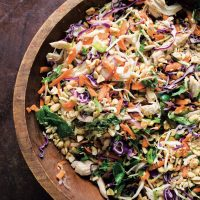 Vietnamese Chicken Salad with Sweet Lime-Garlic Dressing (Goi Gà)
