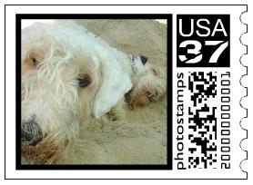 dog_stamp