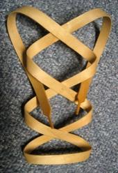 Ericquebral Woodlace