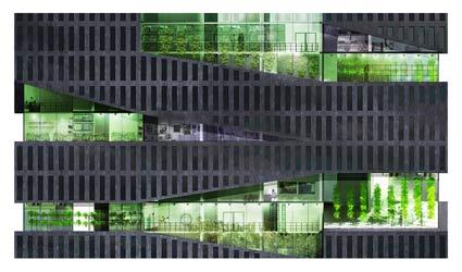 Vertical-Farm-Detail