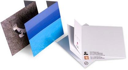 notecards_photo.jpg