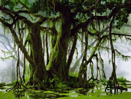 massardswamp.jpg
