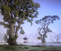 massardtrees.jpg