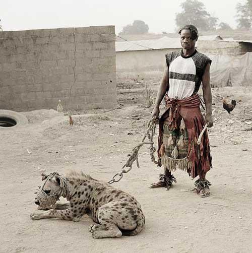 hyena3.jpg