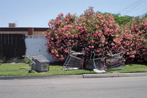 Stamolis_North-Fresno-Street2006.jpg
