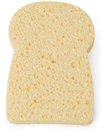 sandwichsponge.jpg