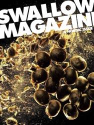 swallow-2.jpg