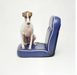 Daan_op_blauwe_stoel_2005.3.jpg
