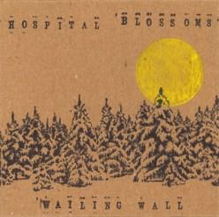 HospitalBlossomsCover.jpg