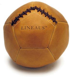 lineausathleticmedicineball.jpg