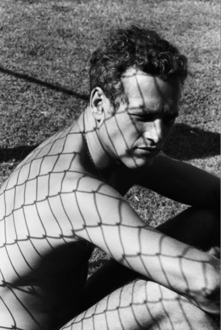 Paul.Newman.jpg