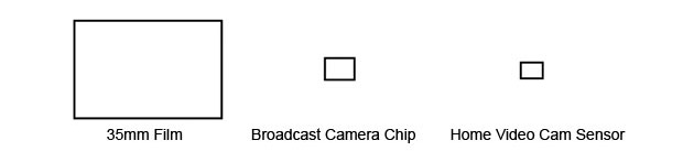 chip-size1.jpg