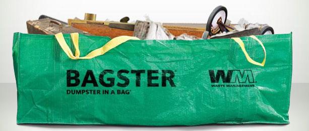 bagster.jpg