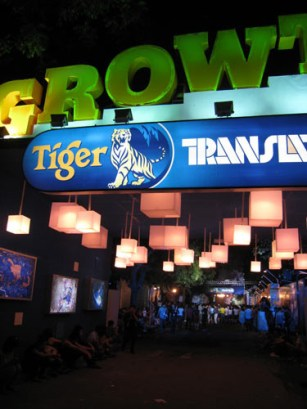 TigerTranslate-5.jpg