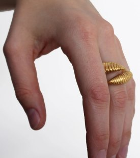 Saeter-worm-on-hand.jpg