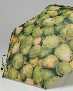 brussels-umbrella1.jpg