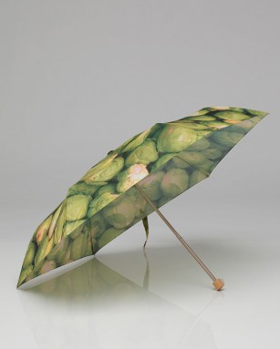 brussels-umbrella2.jpg
