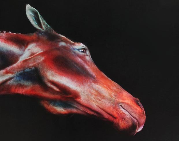 Thumbnail image for Jill-greenberg-horses-2.jpg