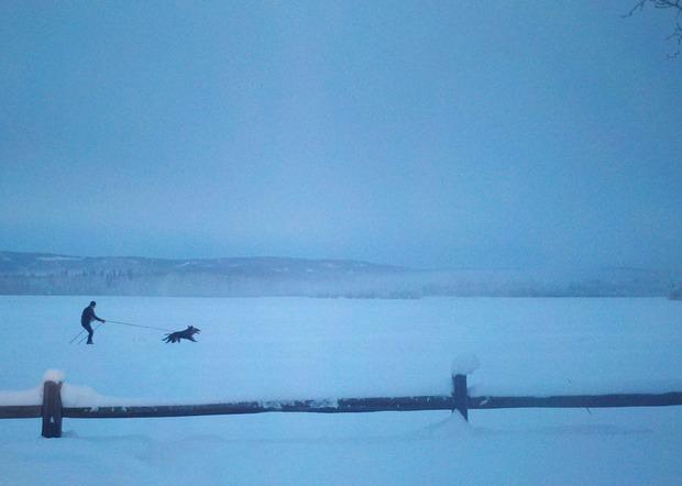 WOM-Fairbanks-field.jpg