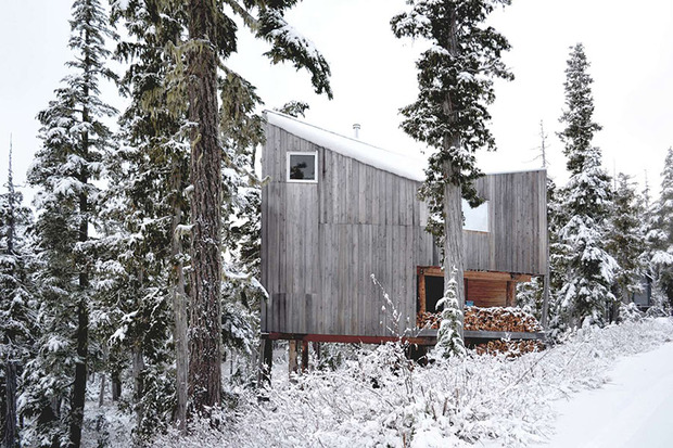 alpine-cabin-scott-scott-architects-architizer-awards.jpg